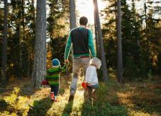 Erste Schritte im Wald - auch jeder Waldeigentümer fängt mal klein an - Waldbesitz