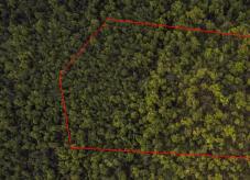 Die Grenzen eines Waldgrundstücks aus der Vogelperspektive - Wald kaufen