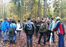 Die gemeinsame Waldbegehung - Eine Möglichkeit der Beratung - Waldgenossenschaft