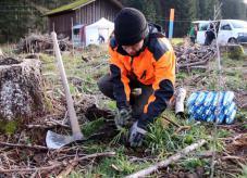 Bergwaldprojekt - Wald der Zukunft