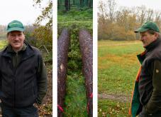 Gräflich Berstorff´sche Betriebe zum Wald im Klimawandel