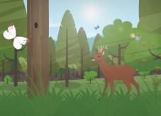 Waldkalender: Sommer im Wald