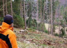 Christian Dinauer - Waldeigentümer aus Bayern