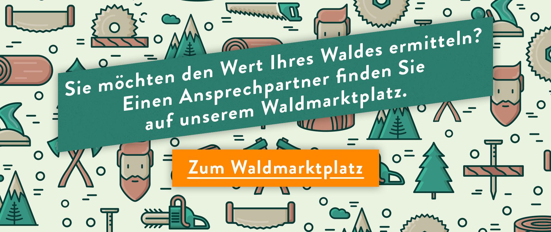 Sie möchten den Wert Ihres Waldes ermitteln? Einen Ansprechpartner finden Sie auf unserem Waldmarktplatz.